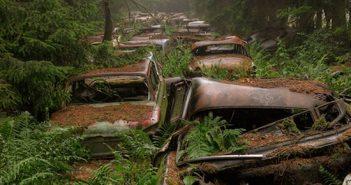 1,9 million d'euros pour des carcasses de voitures de collection